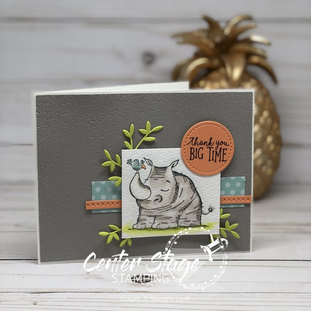 Animal Outing Thank You - Center Stage Stamping